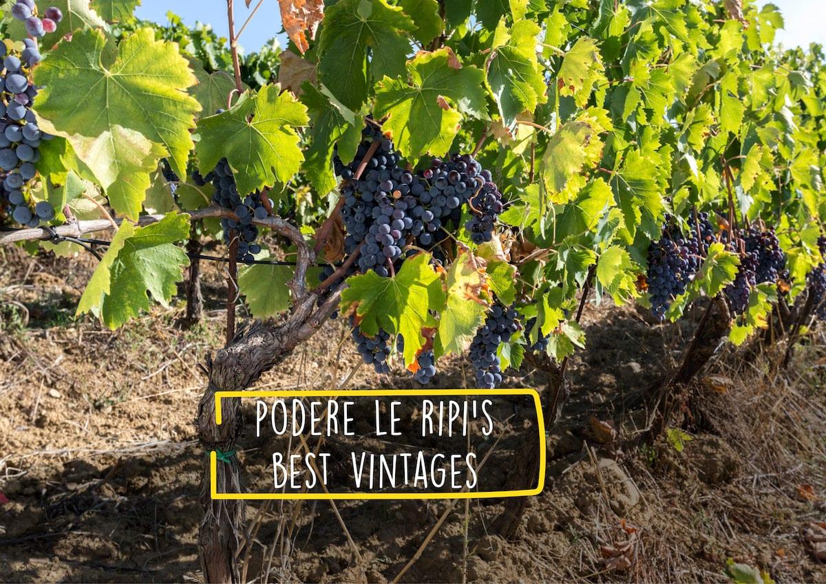 Podere Le Ripi's best vintages