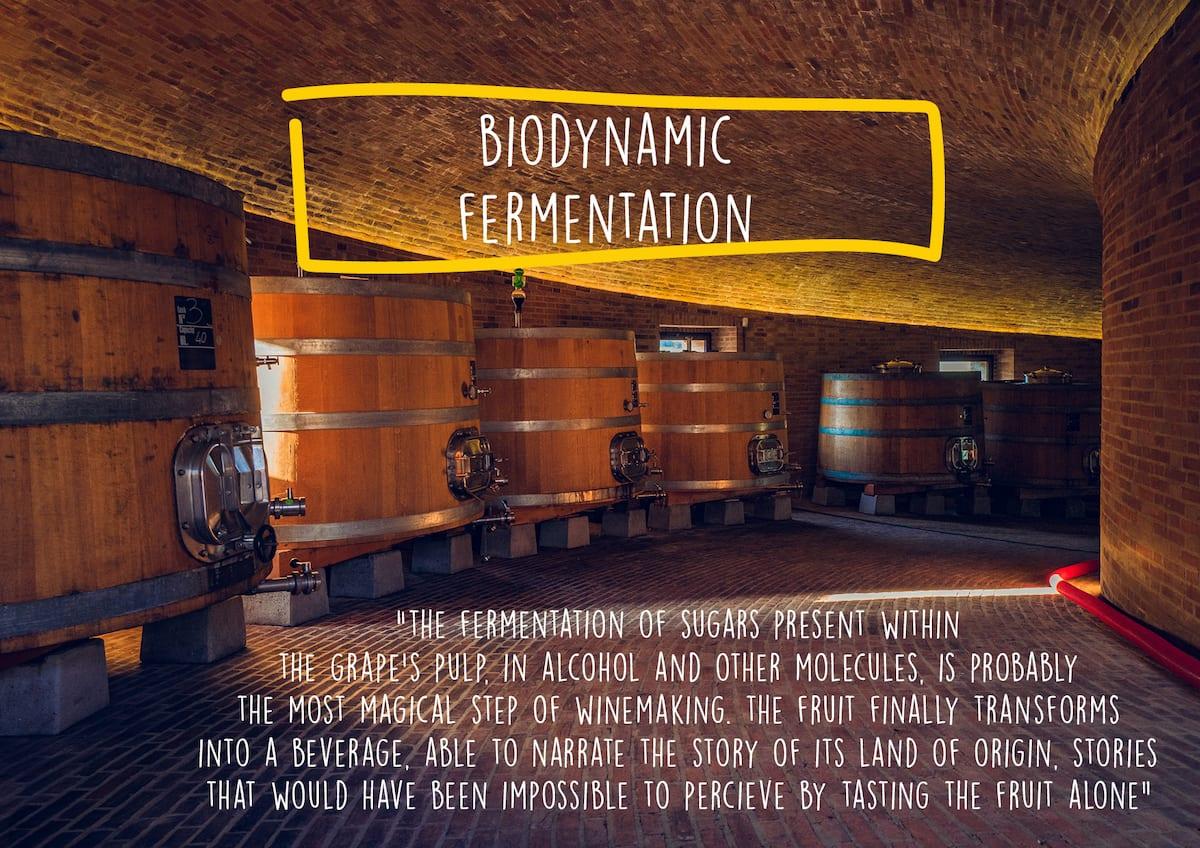 Biodynamic fermentation