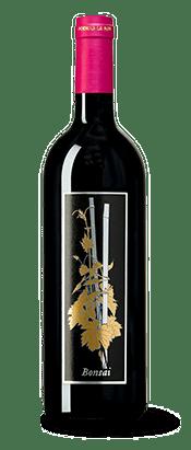Our Montalcino Wines | Podere Le Ripi