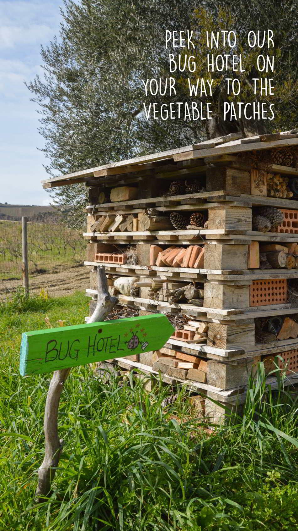 Montalcino Tuscan Garden Tour