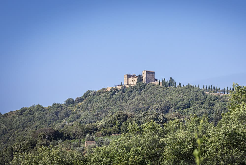 Podere le Ripi winery, view of Montalcino vineyards