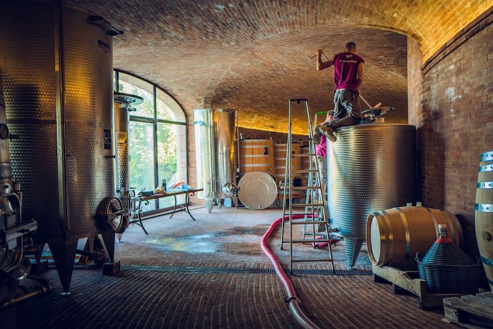 Golden cellar montalcino: the cellar start to work