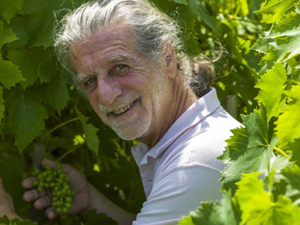 Francesco Illy, winemaker in Montalcino
