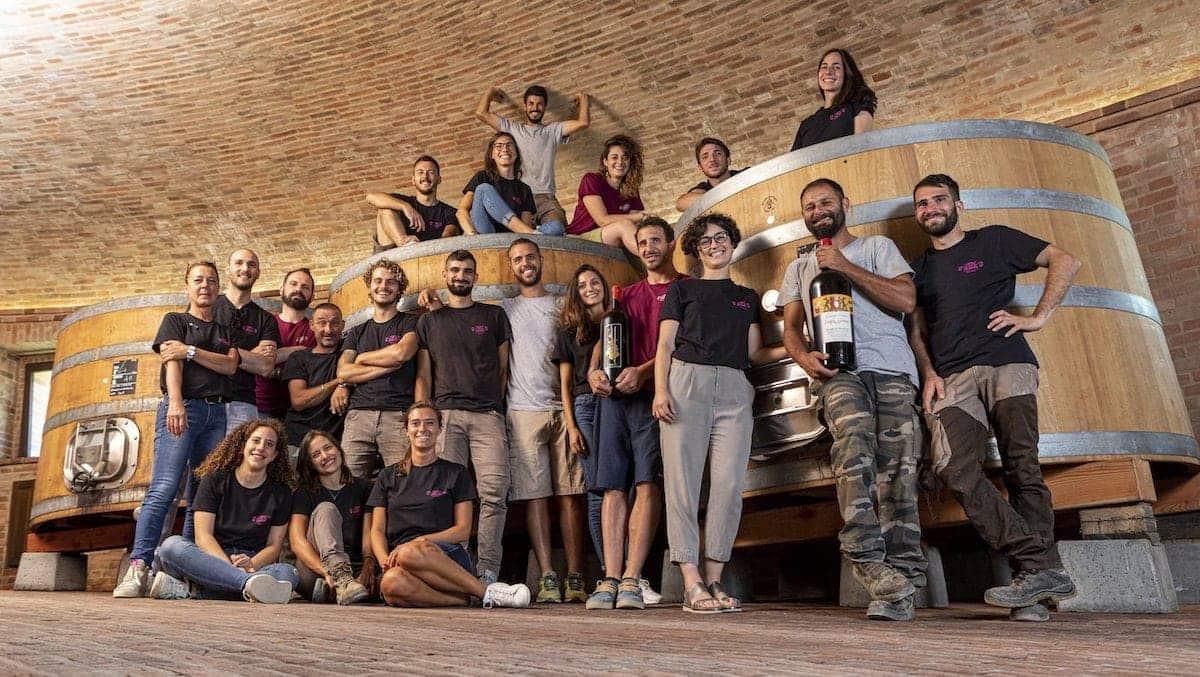 Winemakers in Montalcino in the vineyard