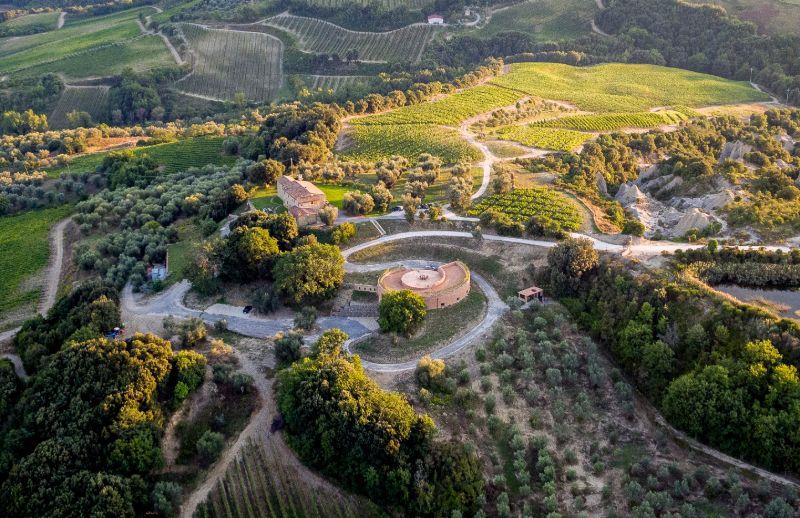 podere le ripi vineyard montalcino